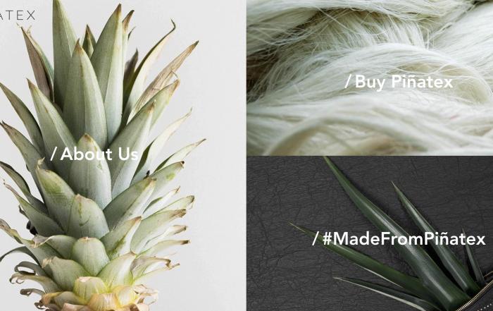 5 Sustainable Fabric Alternatives